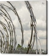 Coils Of Razor Wire On Fence Acrylic Print