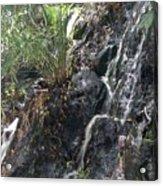 Coki Waterfall Acrylic Print