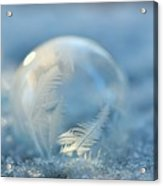 Cold As Ice Acrylic Print