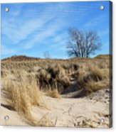 Cold Dune Day Acrylic Print