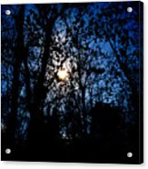 Cold Moon Acrylic Print