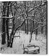Cold Seat Acrylic Print