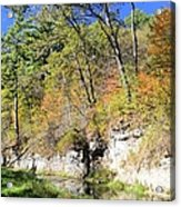 Coldwater Trout Stream Acrylic Print