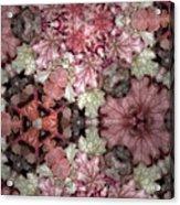 Coleus Patterns Acrylic Print