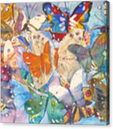 Collage Of Butterflies Acrylic Print