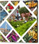 Collage Of Madeira  Acrylic Print