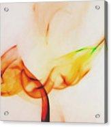 Color And Smoke I Acrylic Print