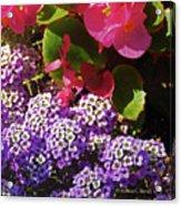 Color Combination Flowers Cc63 Acrylic Print