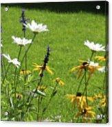 Color Combination Flowers Cc64 Acrylic Print