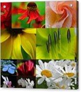 Color Emotion Acrylic Print