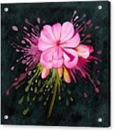 Color Eruption  Acrylic Print
