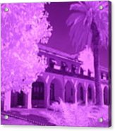 Color Infrared Acrylic Print