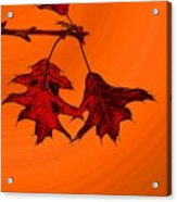 Color Me Autumn 2 Acrylic Print