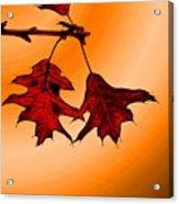 Color Me Autumn 3 Acrylic Print