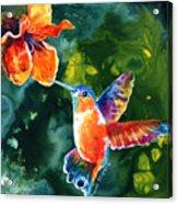 Color Me Humming Acrylic Print