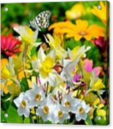 Color Of Nature Acrylic Print