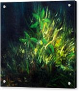 Color Oil Painting Green Plant On Dark Blue Background Acrylic Print