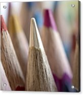 Color Pencils Close-up Acrylic Print