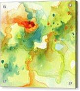 Color Spot 016 Acrylic Print