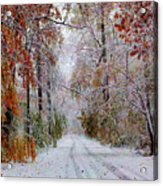 Color Tunnel In The Sourlands Acrylic Print