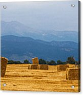 Colorado Agriculture Farming Panorama View Acrylic Print