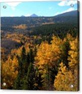 Colorado Autumn - 2 Acrylic Print