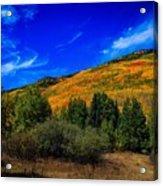 Colorado Beauty Acrylic Print