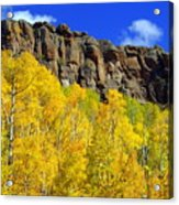 Colorado Fall 3 Acrylic Print