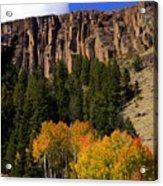 Colorado Fall 4 Acrylic Print
