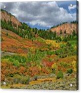Colorado Fall Colors 1 Acrylic Print