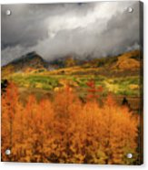 Colorado Fall Colors  Acrylic Print