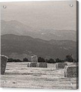 Colorado Farming Panorama View In Black And White Acrylic Print