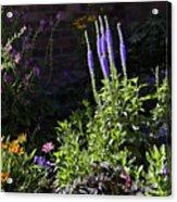 Colorado Flowers Acrylic Print