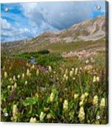 Colorado Late Summer Splendor Acrylic Print