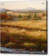 Colorado Meadow Morning Acrylic Print