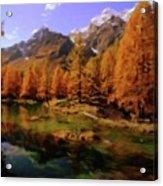 Colorado Nature Acrylic Print