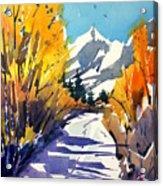 Colorado Winter 1 Acrylic Print
