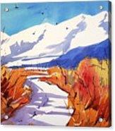 Colorado Winter 2 Acrylic Print