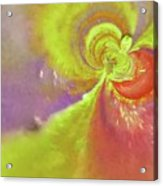 Colored Abstract Acrylic Print
