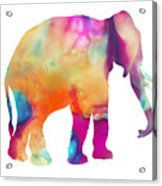 Colored Elephant Painting Acrylic Print
