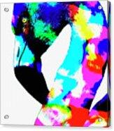 Colored Flamingo Acrylic Print