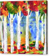 Colorful Aspen Trees View Acrylic Print