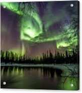 Colorful Auroras Acrylic Print