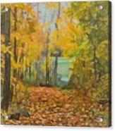Colorful Autumn Trail Acrylic Print