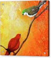 Colorful Bird Art Acrylic Print