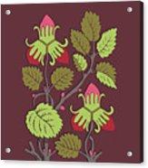 Colorful Botanical Hand Drawn Strawberry Bush Isolated On Vinous Acrylic Print