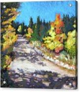 Colorful Colorado Acrylic Print