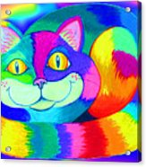 Colorful Crazy Cat Acrylic Print