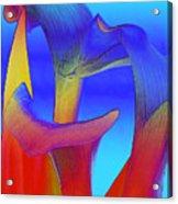 Colorful Crowd Acrylic Print