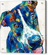 Colorful Dog Art - Happy Go Lucky - By Sharon Cummings Acrylic Print